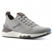 Lifestyle Shoes Reebok Floatride 6000 Womens Grey/White CN1761
