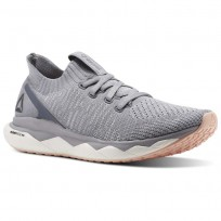 Lifestyle Shoes Reebok Floatride Rs Ultk Womens Grey CM8682