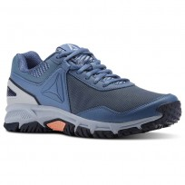 Walking Shoes Reebok Ridgeride Trail 3.0 Womens Blue/Grey/Navy CN4617