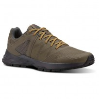 Reebok Astroride Trail Walking Shoes Mens Grey/Gold CN4579
