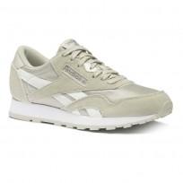 Reebok Classic Nylon Shoes Boys Grey/Silver CN8527